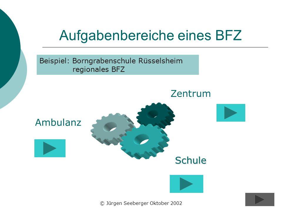 © Jürgen Seeberger Oktober 200210 Aufgabenbereiche eines BFZ Beispiel: Borngrabenschule Rüsselsheim regionales BFZ Schule Ambulanz Zentrum
