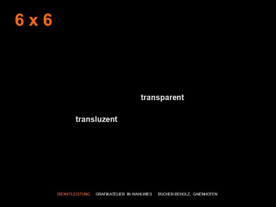 6 x 6 transparent transluzent DIENSTLEISTUNG GRAFIKATELIER IN WAHLWIES BUCHER-BEHOLZ, GAIENHOFEN
