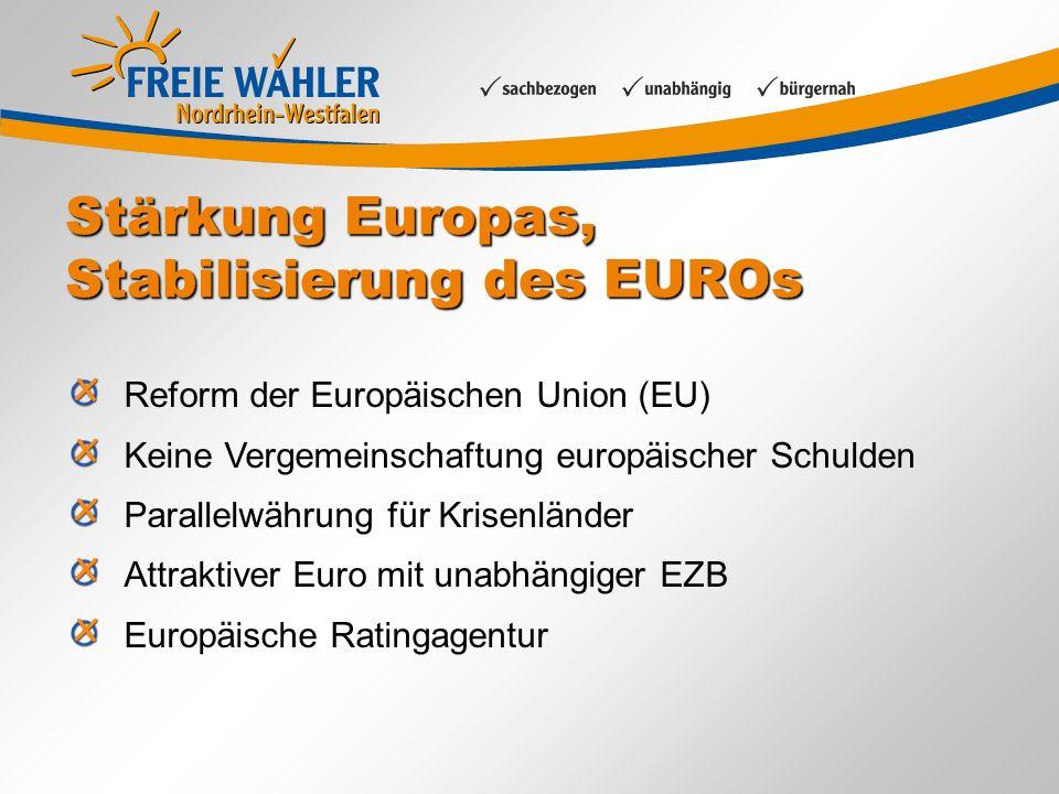 Stärkung Europas, Stabilisierung des EUROs Reform der Europäischen Union (EU) Keine Vergemeinschaftung europäischer Schulden Parallelwährung für Krisenländer Attraktiver Euro mit unabhängiger EZB Europäische Ratingagentur