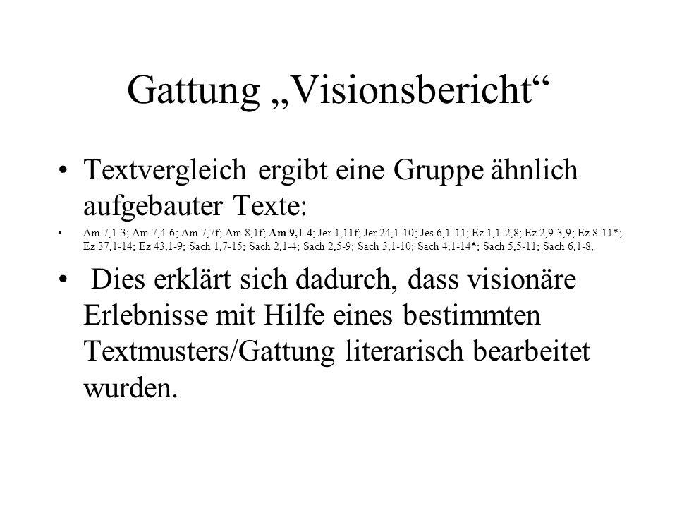 Gattung Visionsbericht Textvergleich ergibt eine Gruppe ähnlich aufgebauter Texte: Am 7,1-3; Am 7,4-6; Am 7,7f; Am 8,1f; Am 9,1-4; Jer 1,11f; Jer 24,1