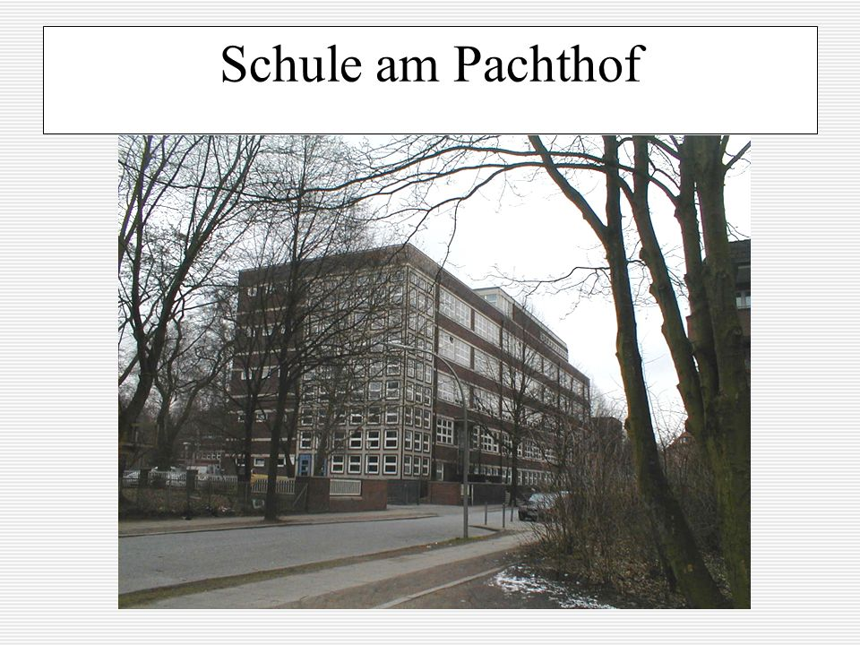 Schule am Pachthof