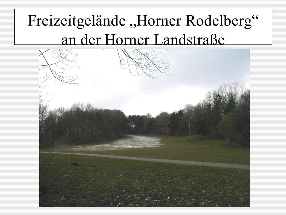 Freizeitgelände Horner Rodelberg an der Horner Landstraße