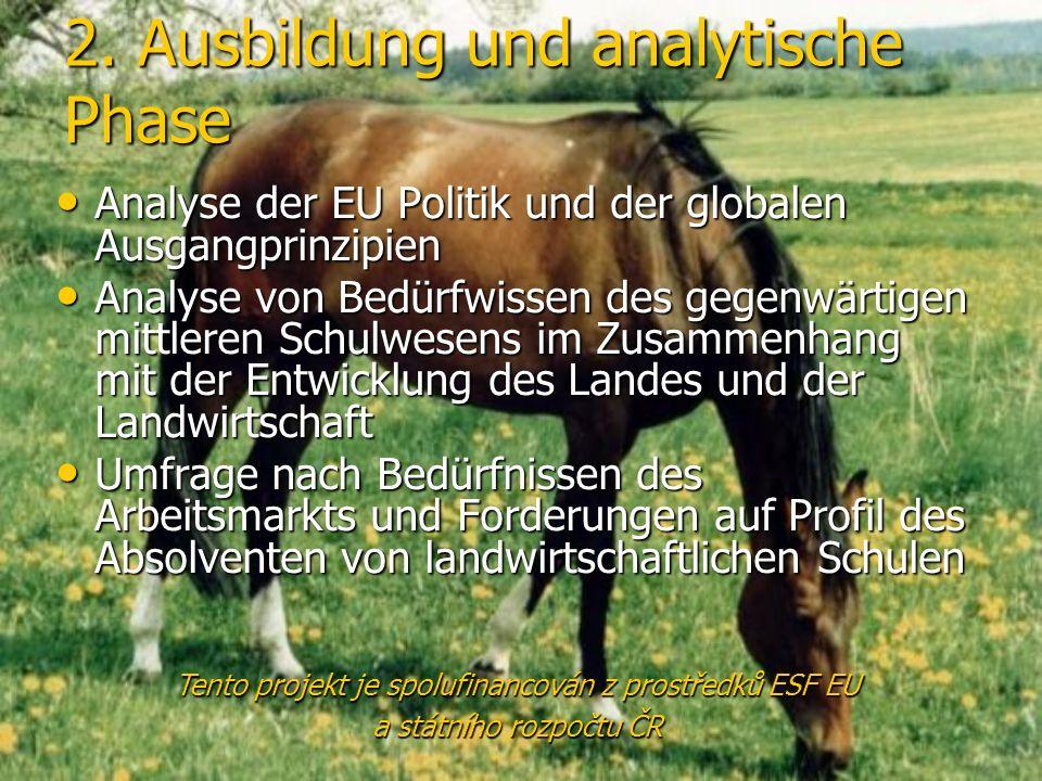 2. Ausbildung und analytische Phase Analyse der EU Politik und der globalen Ausgangprinzipien Analyse der EU Politik und der globalen Ausgangprinzipie