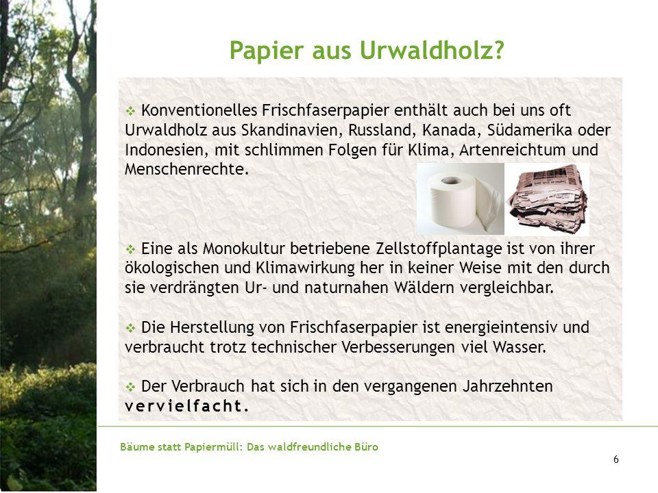 Bäume statt Papiermüll: Das waldfreundliche Büro 6 Papier aus Urwaldholz? Konventionelles Frischfaserpapier enthält auch bei uns oft Urwaldholz aus Sk