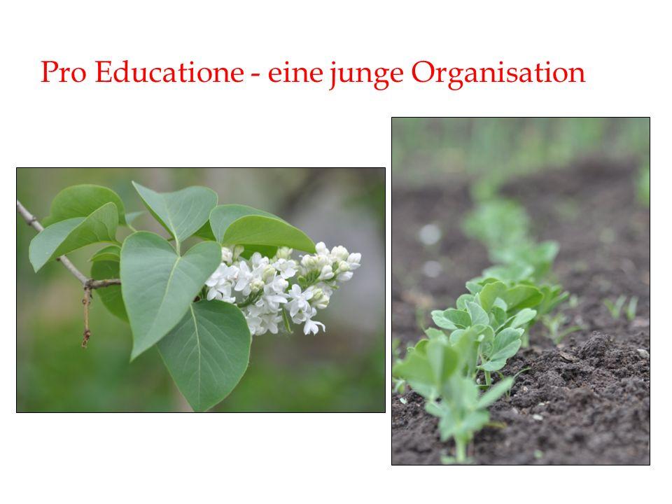 Pro Educatione - eine junge Organisation