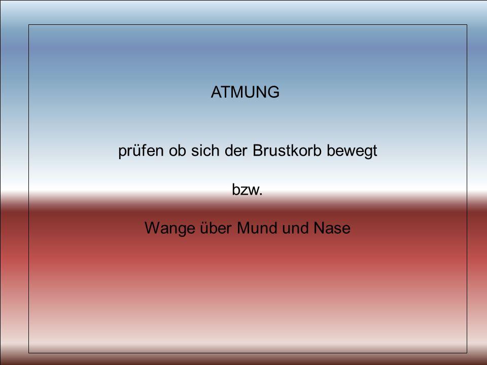 ATMUNG prüfen ob sich der Brustkorb bewegt bzw. Wange über Mund und Nase