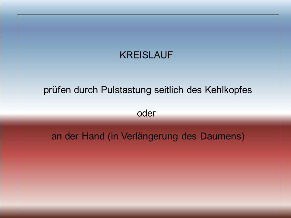 KREISLAUF prüfen durch Pulstastung seitlich des Kehlkopfes oder an der Hand (in Verlängerung des Daumens)