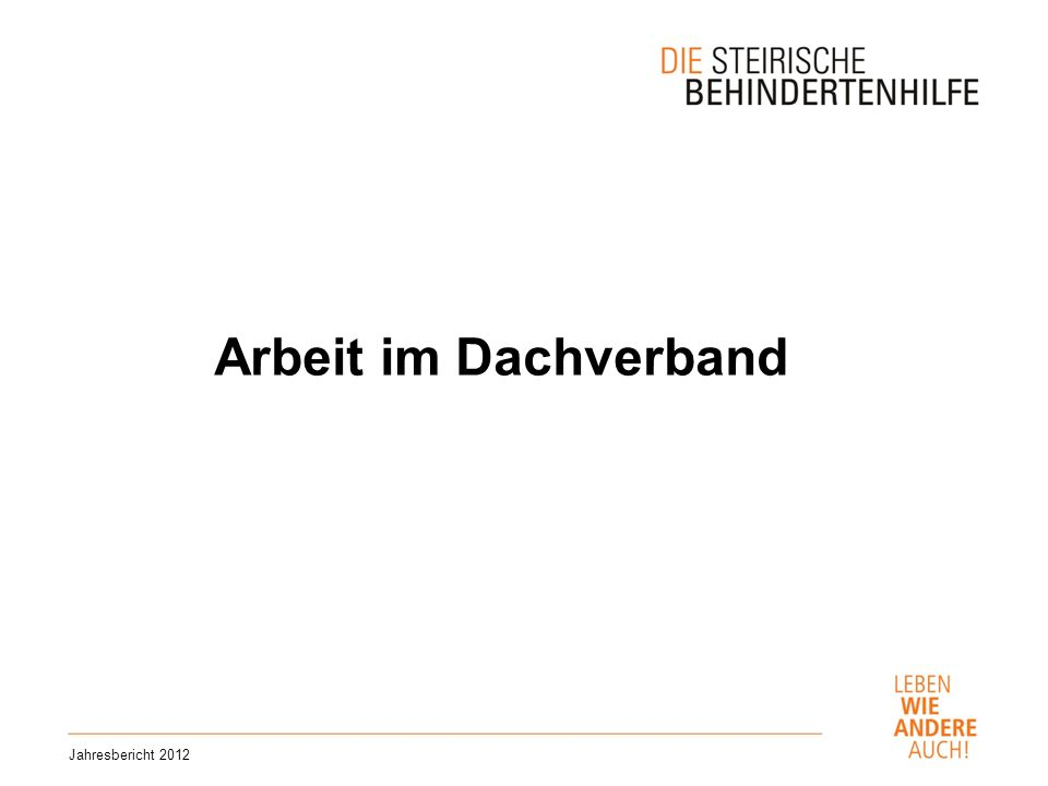 Arbeit im Dachverband Jahresbericht 2012