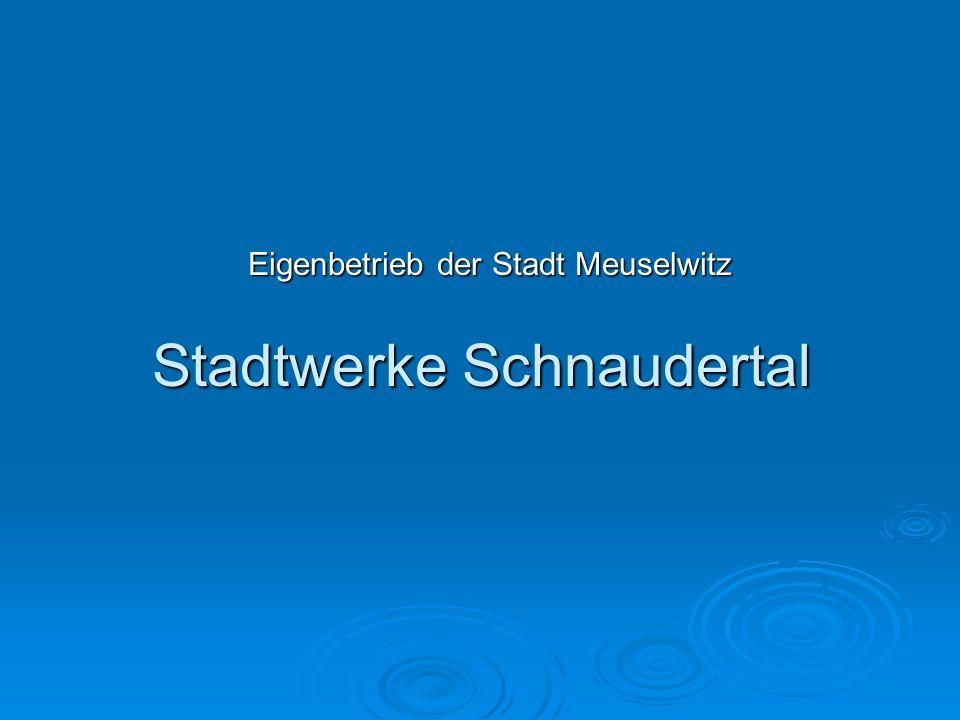 Stadtwerke Schnaudertal Eigenbetrieb der Stadt Meuselwitz