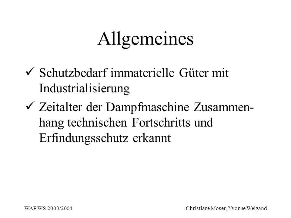 WAP WS 2003/2004 Christiane Moser, Yvonne Weigand Allgemeines Schutzbedarf immaterielle Güter mit Industrialisierung Zeitalter der Dampfmaschine Zusam