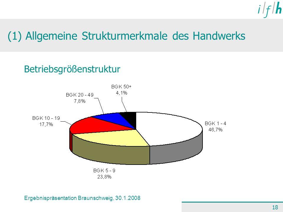 Ergebnispräsentation Braunschweig, 30.1.2008 18 (1) Allgemeine Strukturmerkmale des Handwerks Betriebsgrößenstruktur
