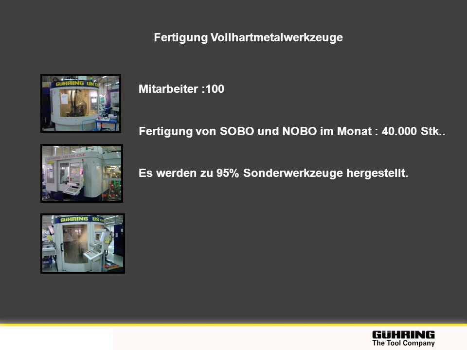 EMO 2009 - Milano Fertigung Vollhartmetalwerkzeuge Mitarbeiter :100 Fertigung von SOBO und NOBO im Monat : 40.000 Stk.. Es werden zu 95% Sonderwerkzeu