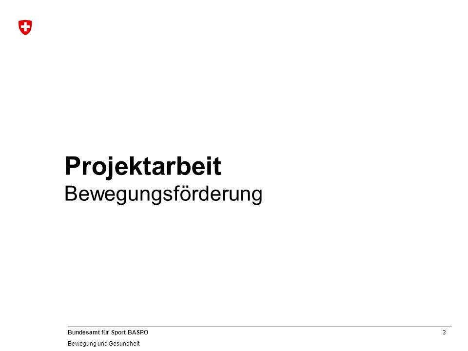 4 Bundesamt für Sport BASPO Bewegung und Gesundheit Der Projekt Eisberg