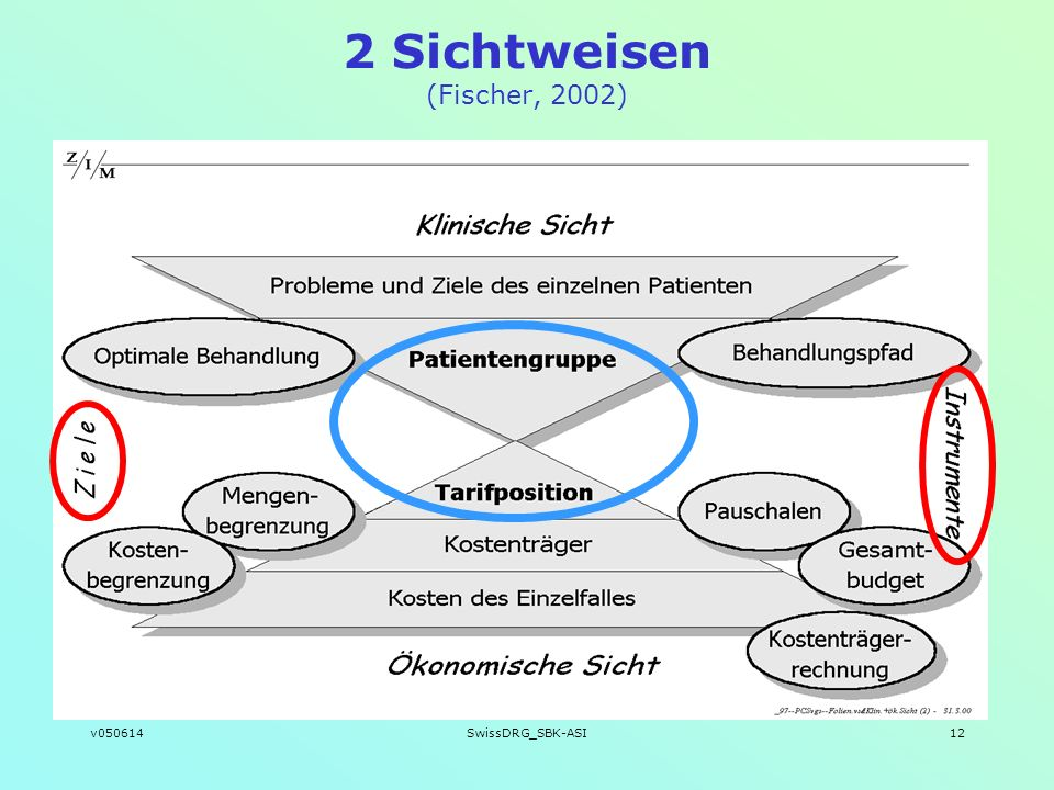 v050614SwissDRG_SBK-ASI12 2 Sichtweisen (Fischer, 2002)