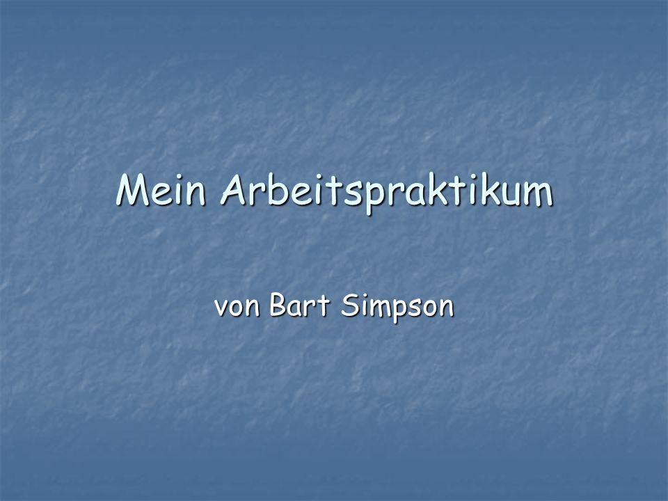 Mein Arbeitspraktikum von Bart Simpson