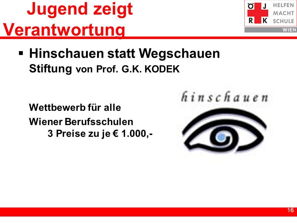 16 Jugend zeigt Verantwortung Hinschauen statt Wegschauen Stiftung von Prof. G.K. KODEK Wettbewerb für alle Wiener Berufsschulen 3 Preise zu je 1.000,