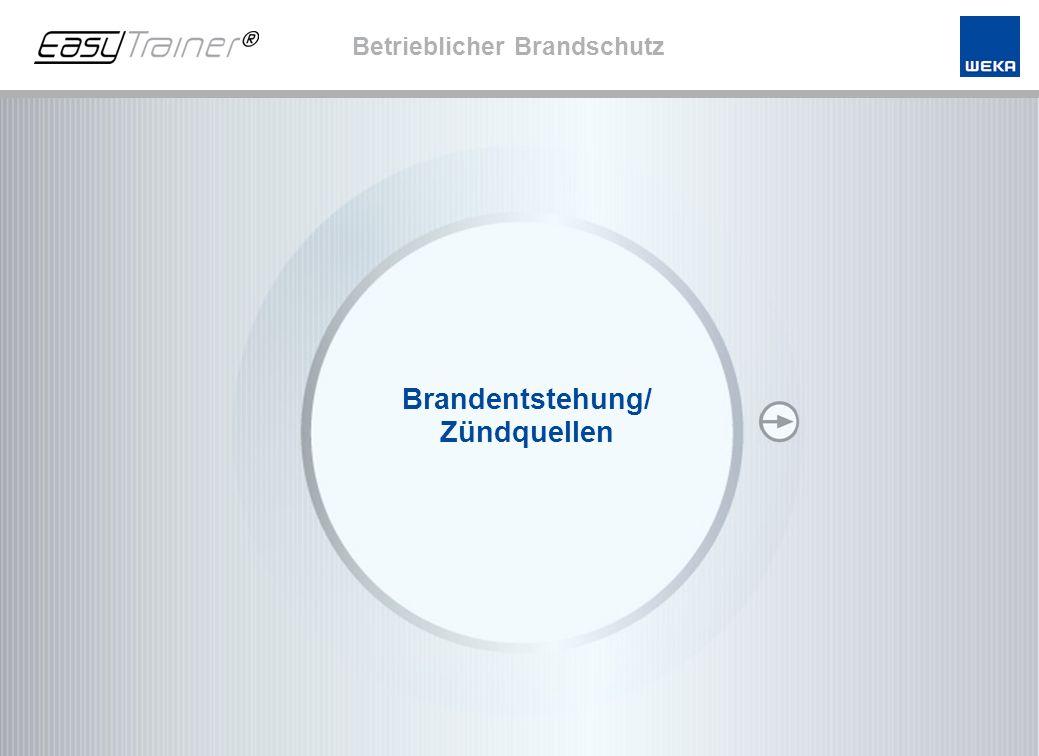 Ende Stand: April 2008 Franz-Michael Birkner Brandsschutzsachverständiger/Sicherheitsingenieur www.psb-fmb.de Immer noch sterben in Deutschland jährlich ca.