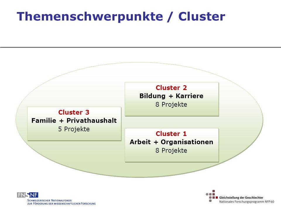 Themenschwerpunkte / Cluster Cluster 2 Bildung + Karriere 8 Projekte Cluster 2 Bildung + Karriere 8 Projekte Cluster 1 Arbeit + Organisationen 8 Proje
