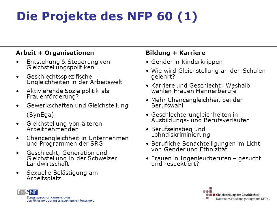 Die Projekte des NFP 60 (1) Arbeit + Organisationen Entstehung & Steuerung von Gleichstellungspolitiken Geschlechtsspezifische Ungleichheiten in der A