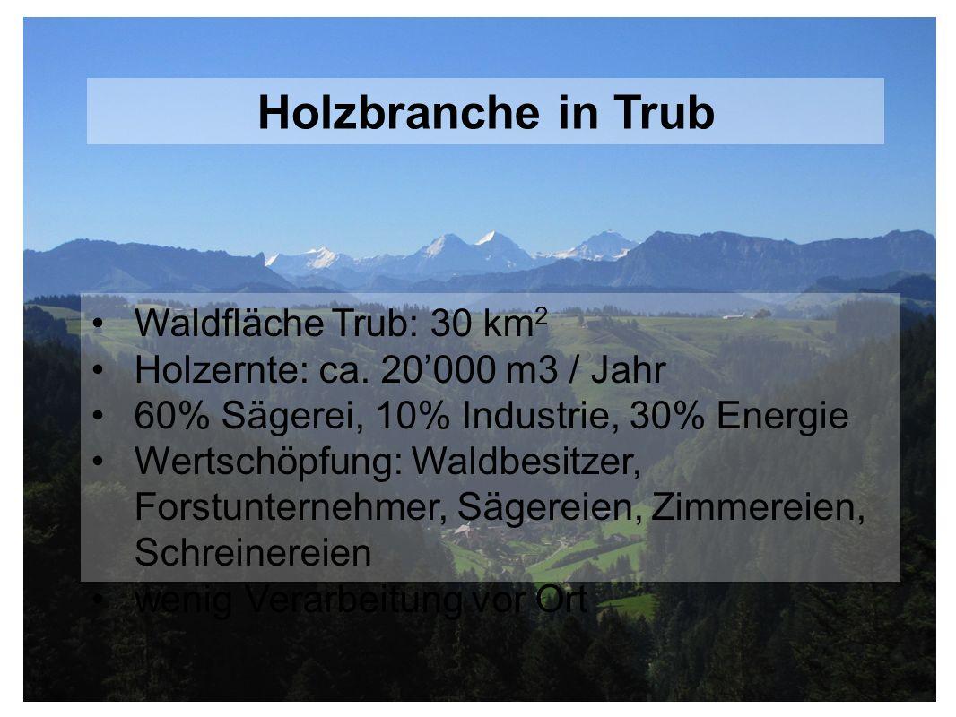 Waldfläche Trub: 30 km 2 Holzernte: ca. 20000 m3 / Jahr 60% Sägerei, 10% Industrie, 30% Energie Wertschöpfung: Waldbesitzer, Forstunternehmer, Sägerei