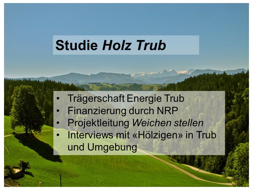 Trägerschaft Energie Trub Finanzierung durch NRP Projektleitung Weichen stellen Interviews mit «Hölzigen» in Trub und Umgebung Studie Holz Trub
