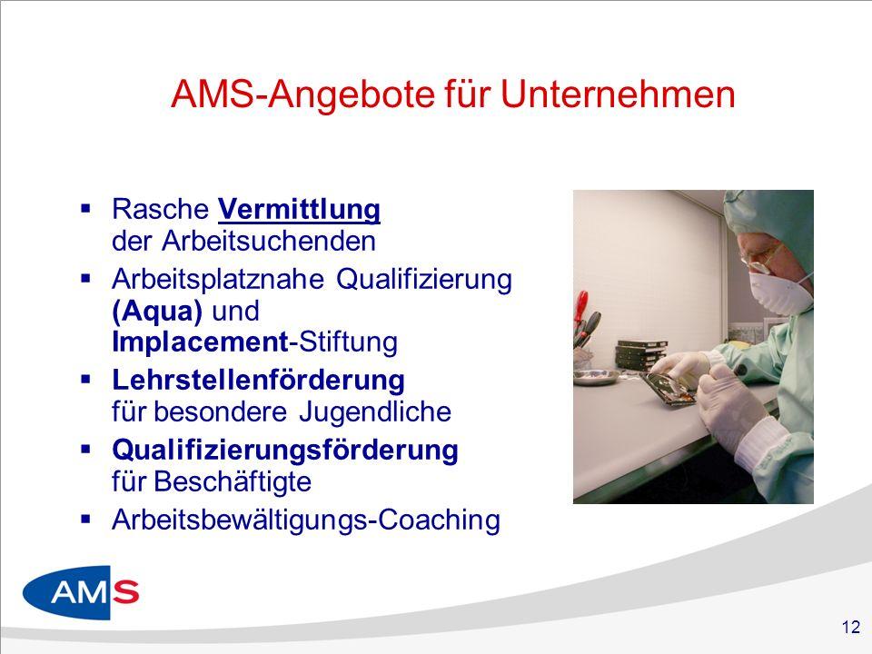 12 AMS-Angebote für Unternehmen Rasche Vermittlung der Arbeitsuchenden Arbeitsplatznahe Qualifizierung (Aqua) und Implacement-Stiftung Lehrstellenförd