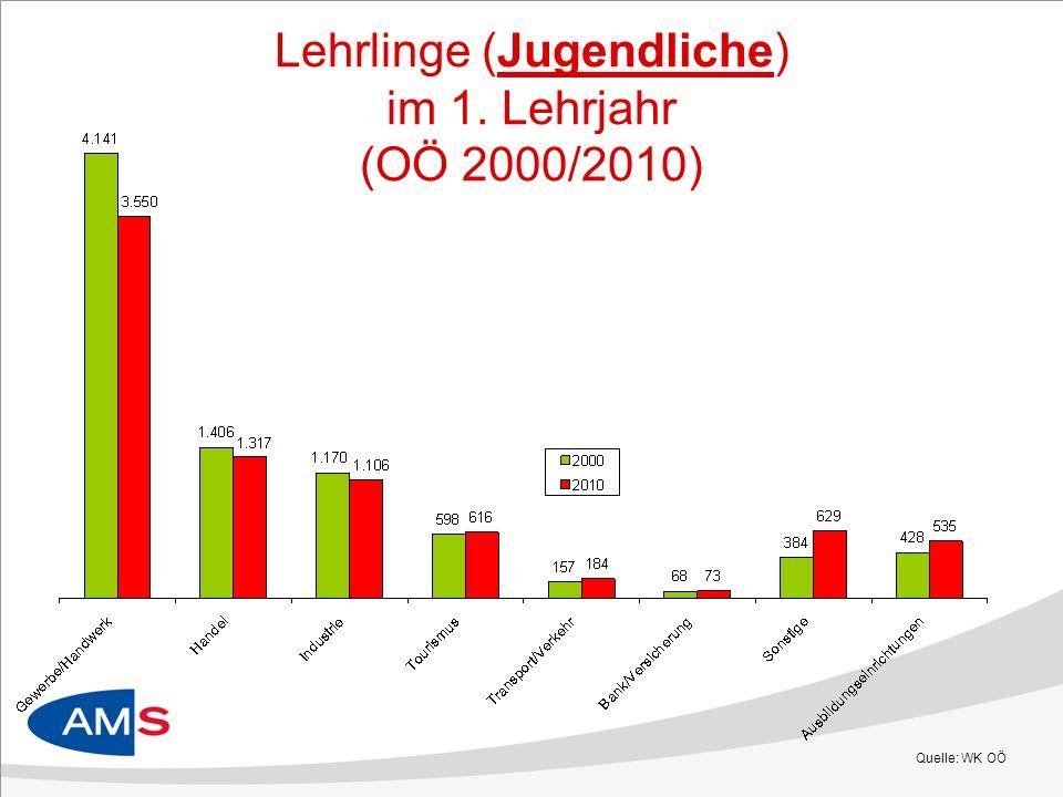 Lehrlinge (Jugendliche) im 1. Lehrjahr (OÖ 2000/2010) Quelle: WK OÖ