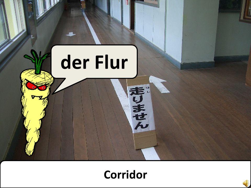 Ground floor das Erdgeschoss