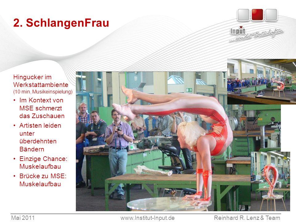 Mai 2011www.Institut-Input.deReinhard R. Lenz & Team 2. SchlangenFrau Hingucker im Werkstattambiente (10 min, Musikeinspielung) Im Kontext von MSE sch