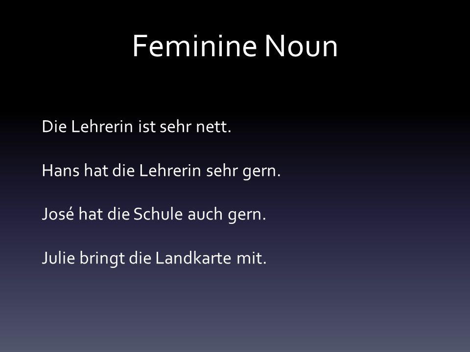 Feminine Noun Die Lehrerin ist sehr nett. Hans hat die Lehrerin sehr gern.