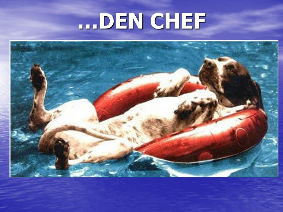 …DEN CHEF