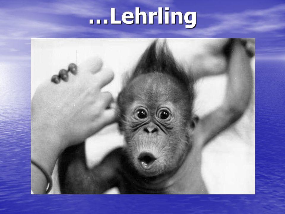 …Lehrling
