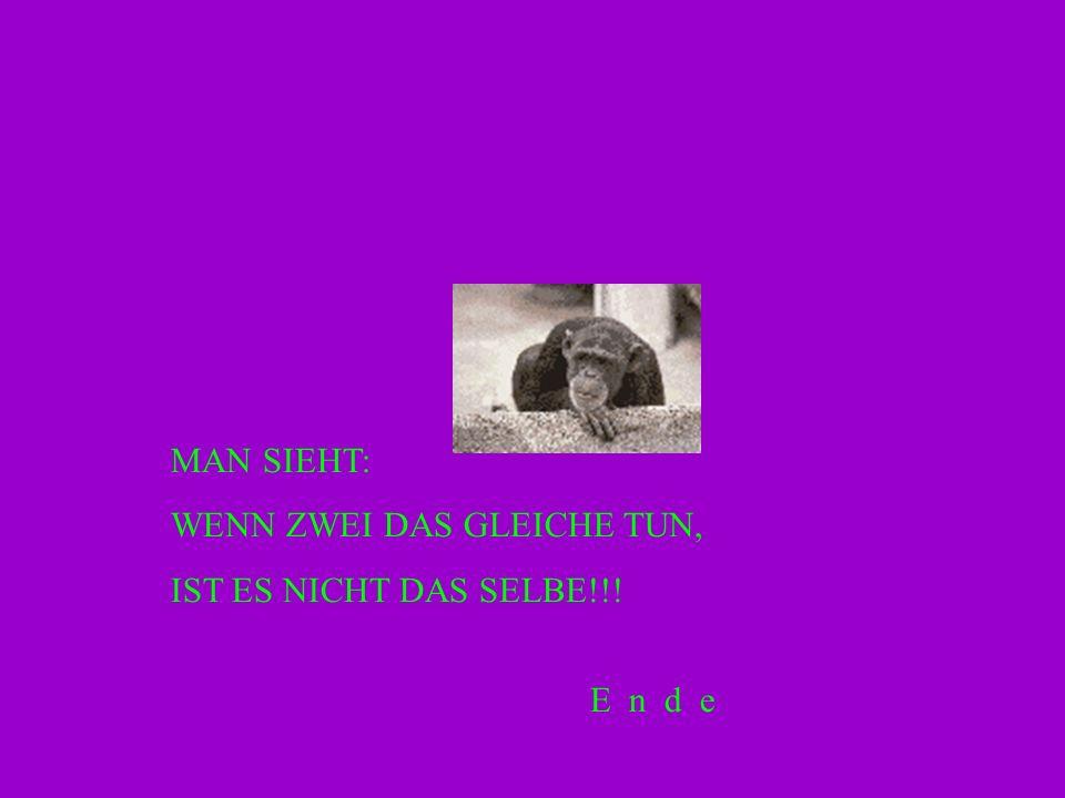 MAN SIEHT: WENN ZWEI DAS GLEICHE TUN, IST ES NICHT DAS SELBE!!! E n d e
