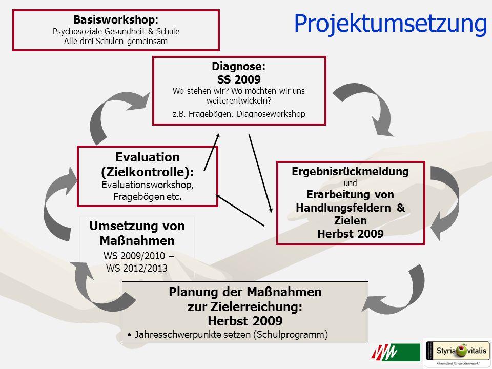 Projektumsetzung Diagnose: SS 2009 Wo stehen wir? Wo möchten wir uns weiterentwickeln? z.B. Fragebögen, Diagnoseworkshop Planung der Maßnahmen zur Zie