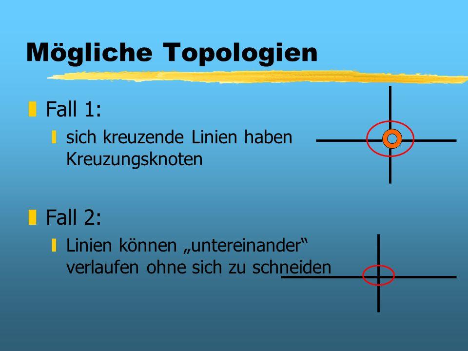 Mögliche Topologien zFall 1: ysich kreuzende Linien haben Kreuzungsknoten zFall 2: yLinien können untereinander verlaufen ohne sich zu schneiden