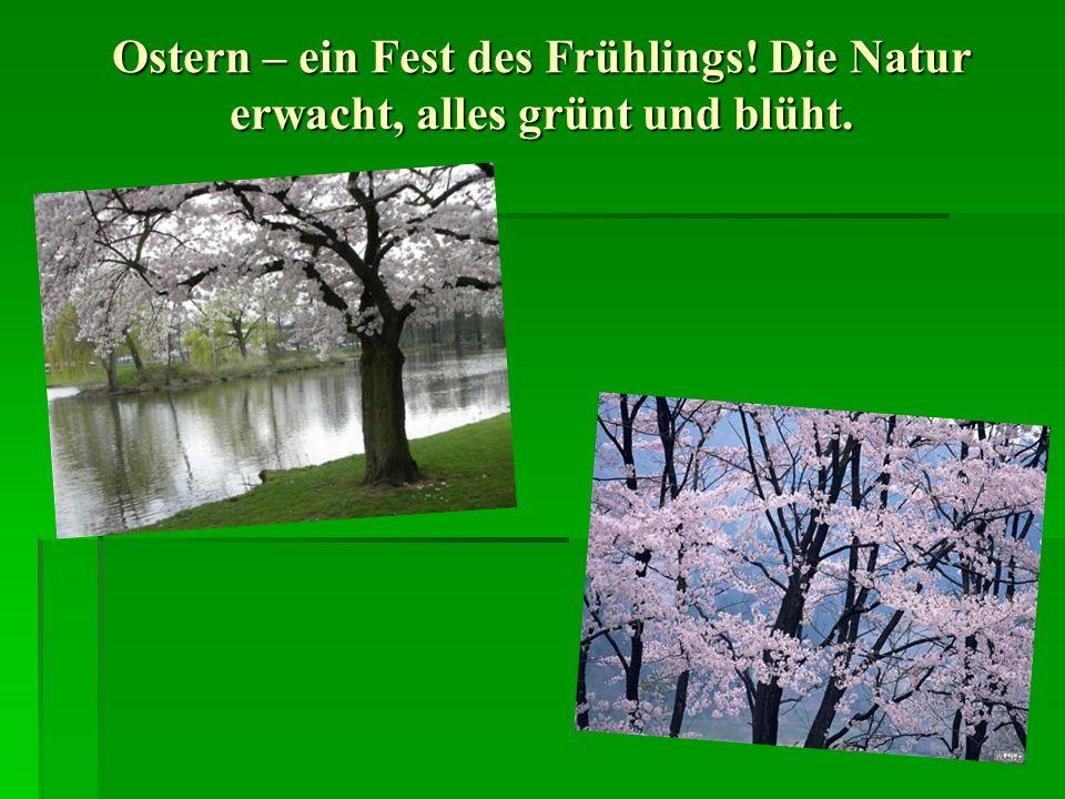 Osterbräuche An Ostern, dem höchsten christlichen Fest, wird seit 2000 Jahren die Auferstehung Christi gefeiert.