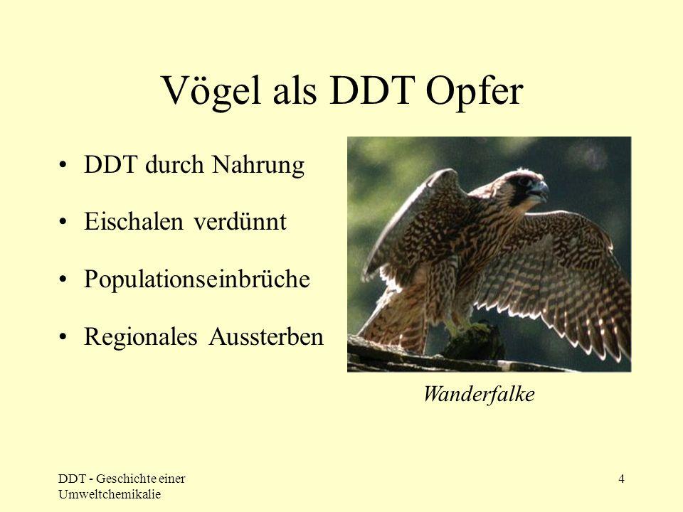 DDT - Geschichte einer Umweltchemikalie 4 Vögel als DDT Opfer DDT durch Nahrung Eischalen verdünnt Populationseinbrüche Regionales Aussterben Wanderfa