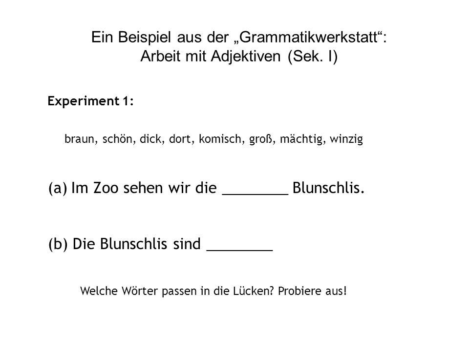 Ein konkretes Beispiel: Arbeit mit Adjektiven Angesichts dieser recht unklaren Ausgangslage stellt Menzel die Frage: Was ist überhaupt ein Adjektiv? A