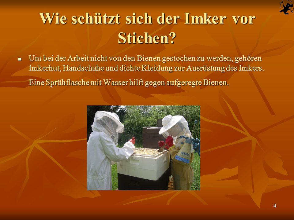 4 Wie schützt sich der Imker vor Stichen? Um bei der Arbeit nicht von den Bienen gestochen zu werden, gehören Imkerhut, Handschuhe und dichte Kleidung