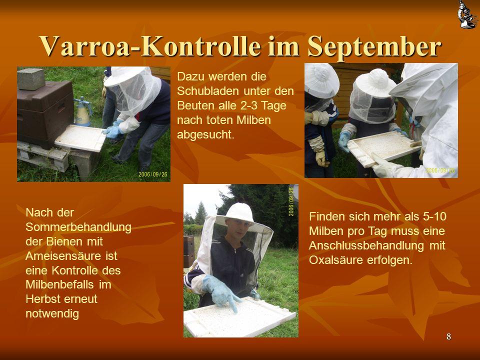 8 Nach der Sommerbehandlung der Bienen mit Ameisensäure ist eine Kontrolle des Milbenbefalls im Herbst erneut notwendig Dazu werden die Schubladen unter den Beuten alle 2-3 Tage nach toten Milben abgesucht.