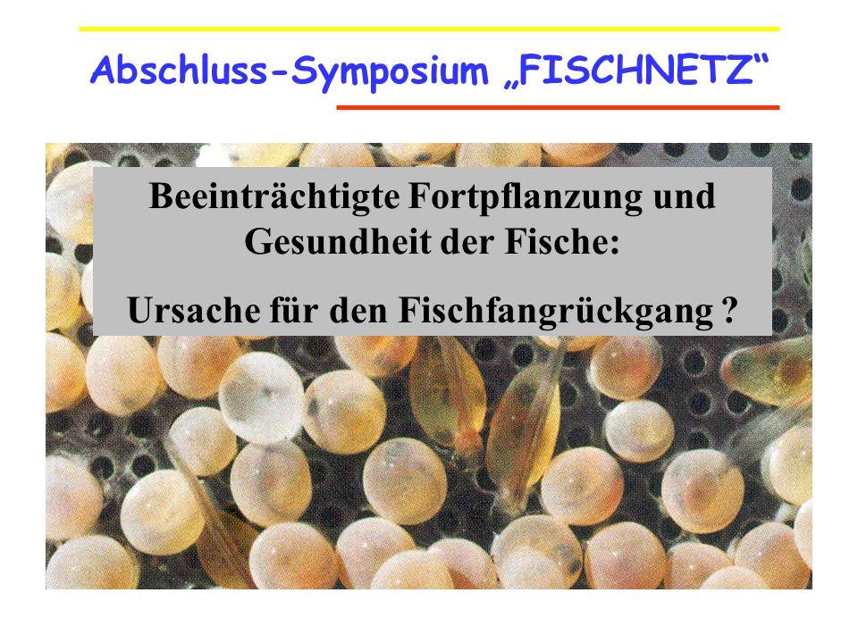 Abschluss-Symposium FISCHNETZ Beeinträchtigte Fortpflanzung und Gesundheit der Fische: Ursache für den Fischfangrückgang ?