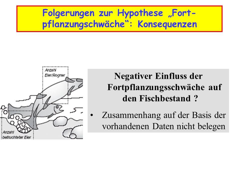 Folgerungen zur Hypothese Fort- pflanzungschwäche: Konsequenzen Negativer Einfluss der Fortpflanzungsschwäche auf den Fischbestand ? Zusammenhang auf