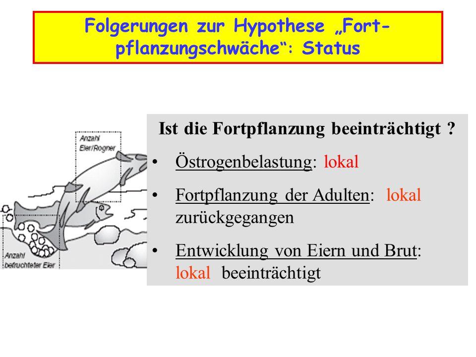 Folgerungen zur Hypothese Fort- pflanzungschwäche: Konsequenzen Negativer Einfluss der Fortpflanzungsschwäche auf den Fischbestand .