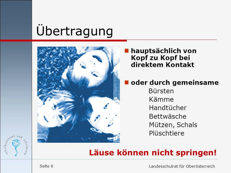 Seite 6 Landesschulrat für Oberösterreich Übertragung hauptsächlich von Kopf zu Kopf bei direktem Kontakt oder durch gemeinsame Bürsten Kämme Handtüch