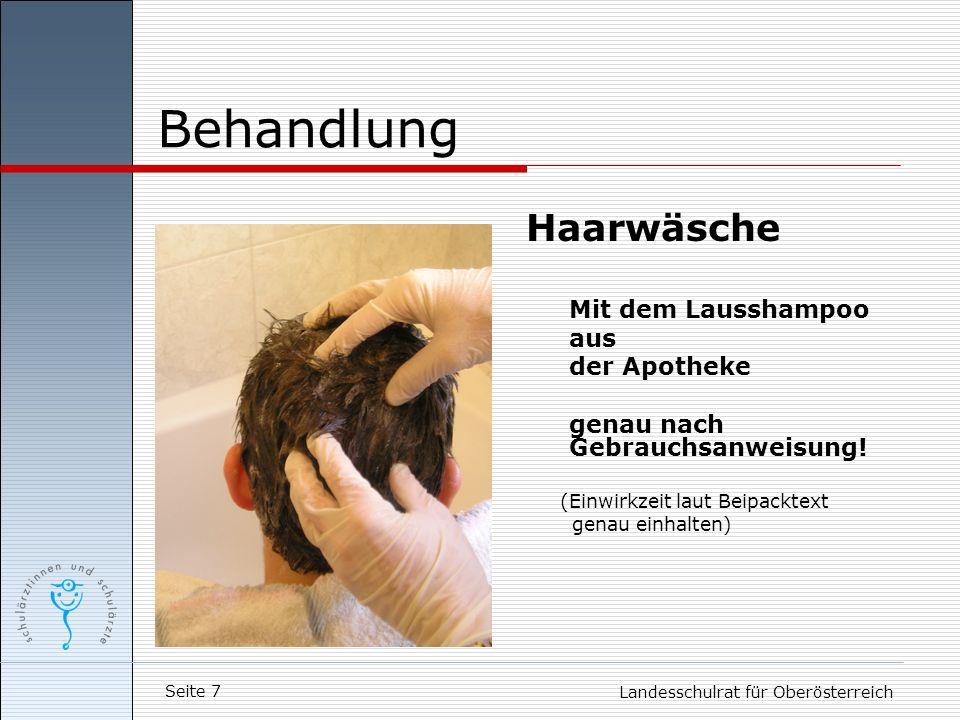 Seite 7 Landesschulrat für Oberösterreich Behandlung Haarwäsche Mit dem Lausshampoo aus der Apotheke genau nach Gebrauchsanweisung! (Einwirkzeit laut