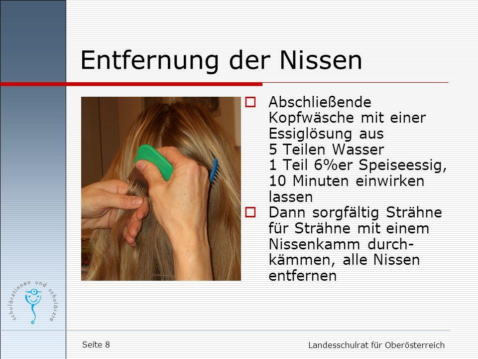 Seite 8 Landesschulrat für Oberösterreich Entfernung der Nissen Abschließende Kopfwäsche mit einer Essiglösung aus 5 Teilen Wasser 1 Teil 6%er Speisee