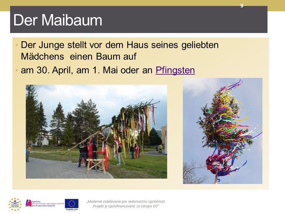 Der Maibaum Der Junge stellt vor dem Haus seines geliebten Mädchens einen Baum auf am 30. April, am 1. Mai oder an Pfingsten Pfingsten 9