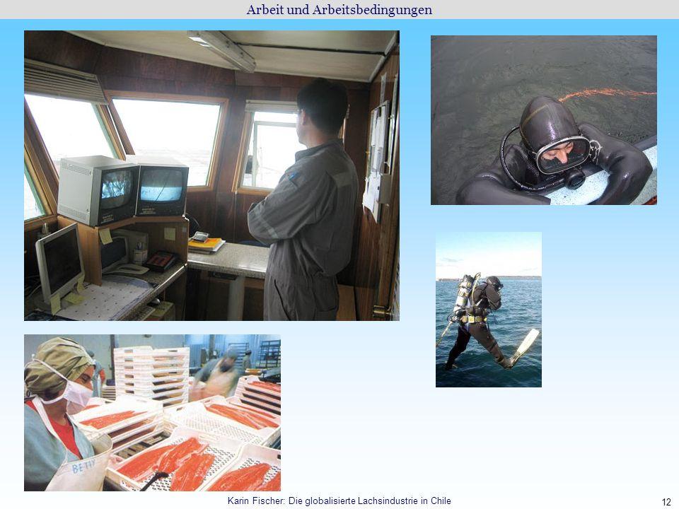 12 Arbeit und Arbeitsbedingungen Karin Fischer: Die globalisierte Lachsindustrie in Chile