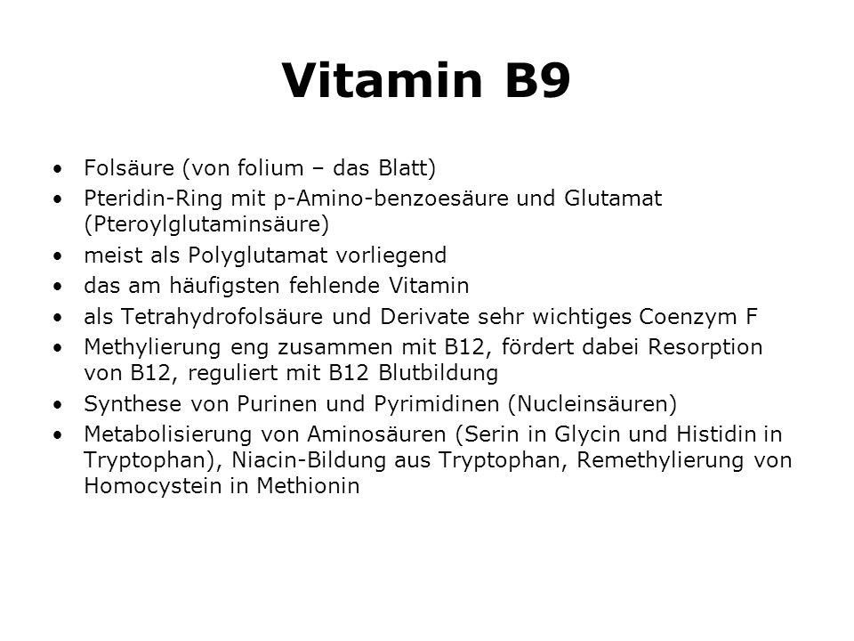 Vitamin B9 Folsäure (von folium – das Blatt) Pteridin-Ring mit p-Amino-benzoesäure und Glutamat (Pteroylglutaminsäure) meist als Polyglutamat vorliegend das am häufigsten fehlende Vitamin als Tetrahydrofolsäure und Derivate sehr wichtiges Coenzym F Methylierung eng zusammen mit B12, fördert dabei Resorption von B12, reguliert mit B12 Blutbildung Synthese von Purinen und Pyrimidinen (Nucleinsäuren) Metabolisierung von Aminosäuren (Serin in Glycin und Histidin in Tryptophan), Niacin-Bildung aus Tryptophan, Remethylierung von Homocystein in Methionin