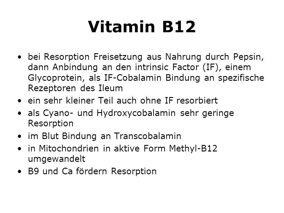 Vitamin B12 bei Resorption Freisetzung aus Nahrung durch Pepsin, dann Anbindung an den intrinsic Factor (IF), einem Glycoprotein, als IF-Cobalamin Bindung an spezifische Rezeptoren des Ileum ein sehr kleiner Teil auch ohne IF resorbiert als Cyano- und Hydroxycobalamin sehr geringe Resorption im Blut Bindung an Transcobalamin in Mitochondrien in aktive Form Methyl-B12 umgewandelt B9 und Ca fördern Resorption